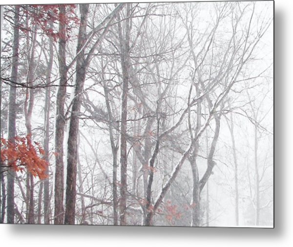 Touch Of Fall In Winter Fog Metal Print