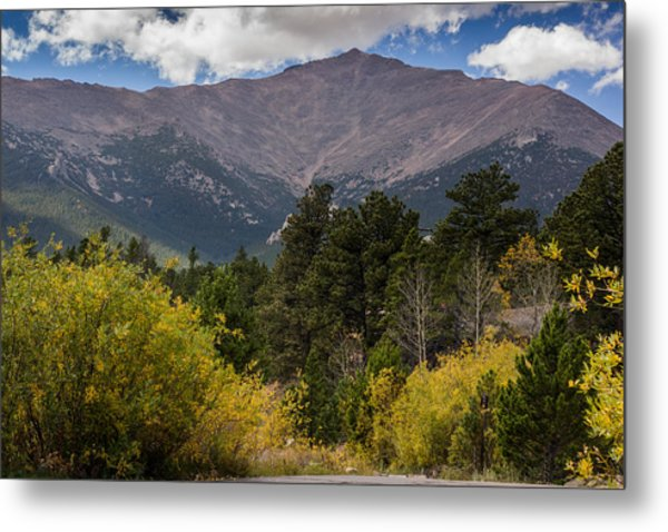 Touch The Sky Metal Print by Linda Storm