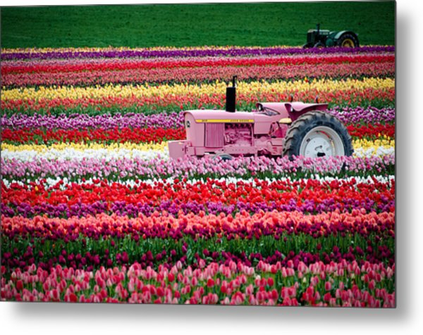 Tractor Races Metal Print