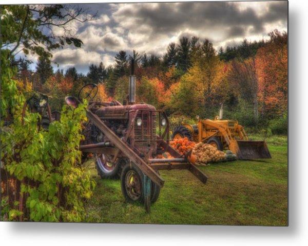 Tractors And Pumpkins Metal Print by Joann Vitali