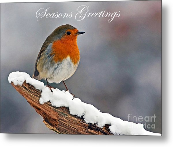 Traditional Christmas Robin Metal Print
