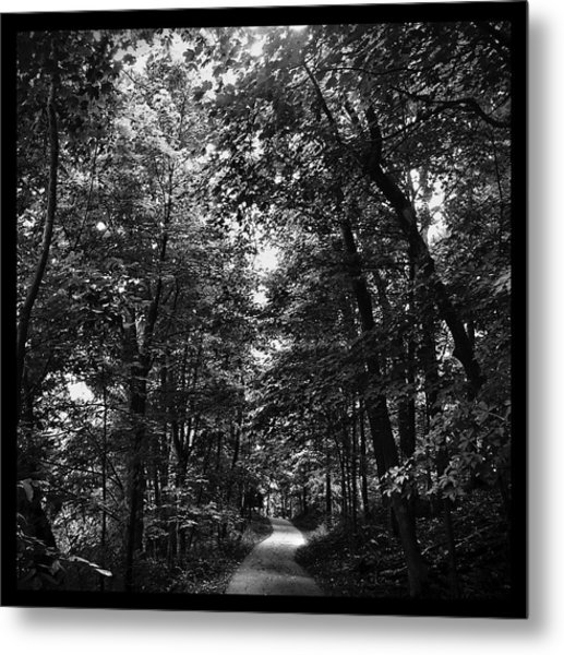 Trail To Love Metal Print