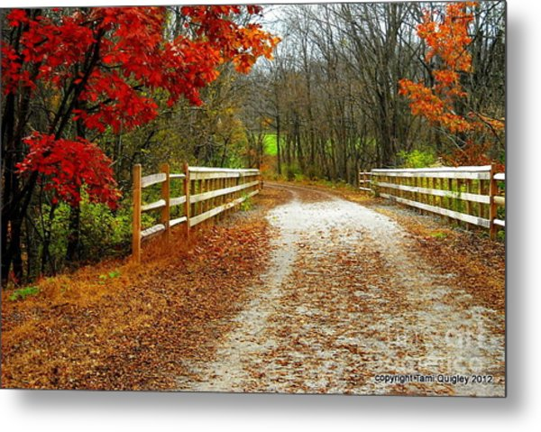 Trailing In Autumn Metal Print