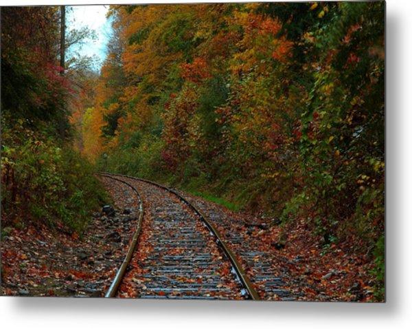 Train Fall Metal Print