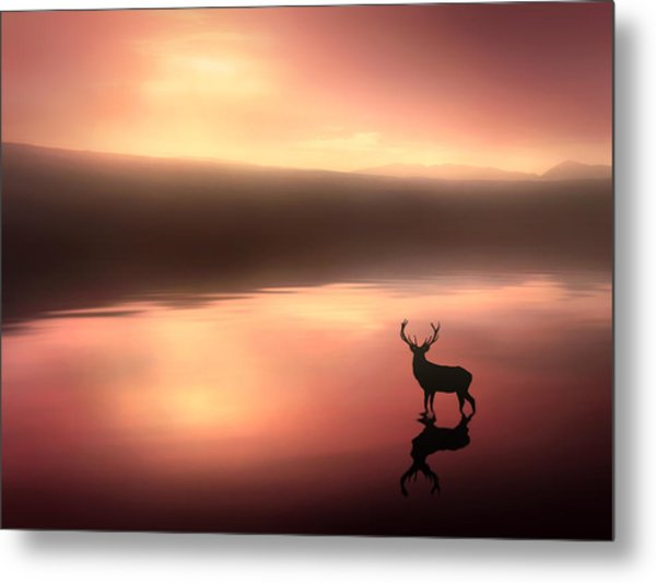 Tranquil Dawn Metal Print by Jennifer Woodward
