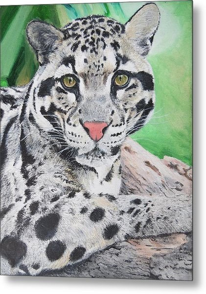 Tranquil Leopard Oil Painting On Canvas 8 X 10 Inches By Pigatopia Metal Print