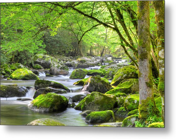 Tranquil Waters Metal Print by Mary Anne Baker