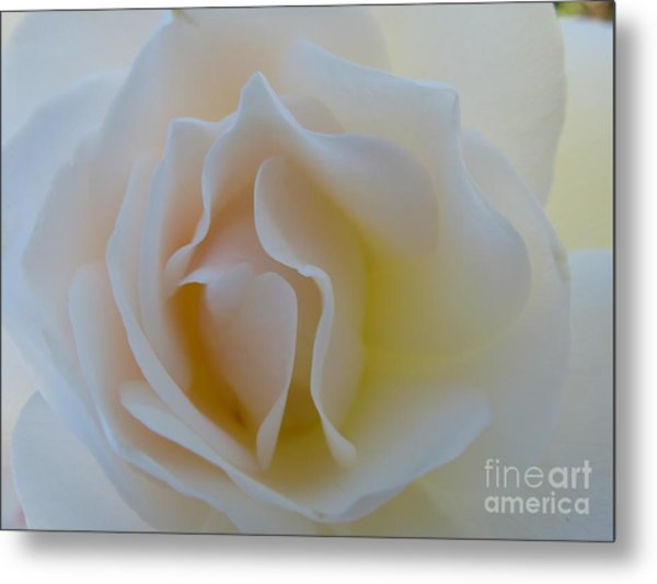 Tranquility  Metal Print by Anat Gerards