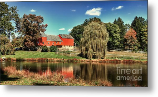 Tranquility Metal Print by Louise Reeves