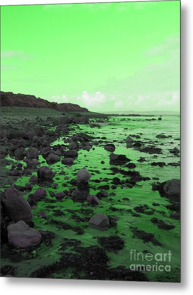 Tranquiliy Metal Print by Jo Collins