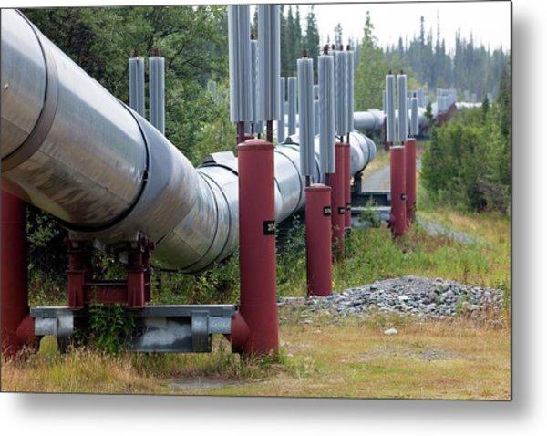 Trans-alaska Oil Pipeline Metal Print
