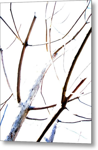 Transparency Composition Metal Print by Michel Mata