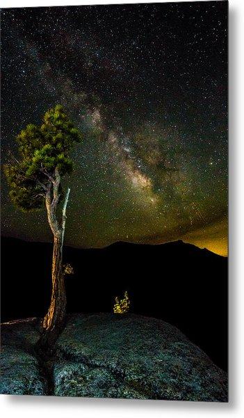Tree Amongst The Stars Metal Print