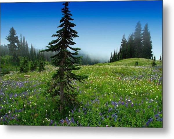 Tree Amongst Wildflowers Metal Print