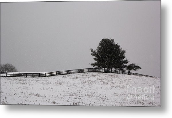 Tree And Fence In Snow Storm Metal Print