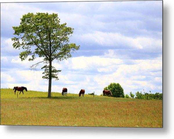 Tree And Horses Metal Print