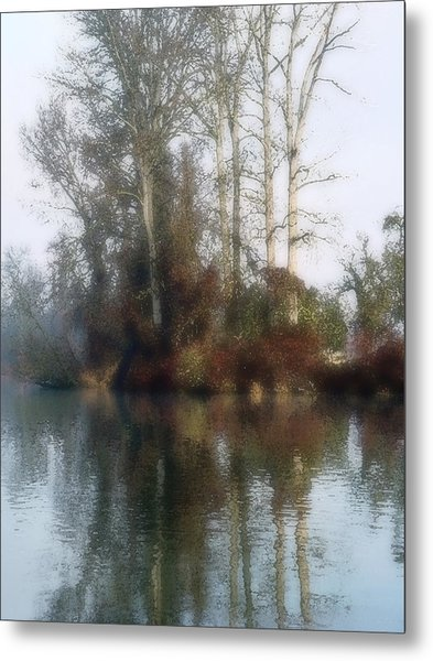 Tree And Reflection Metal Print