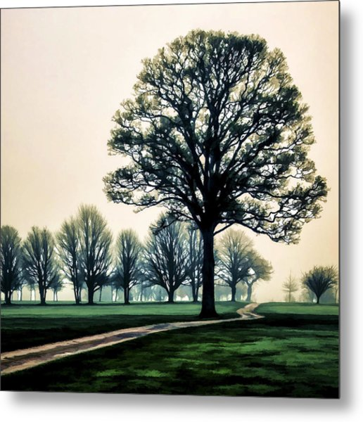 Tree At Dawn On Golf Course Metal Print