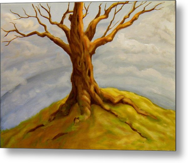 Tree At The Top Of The World Metal Print
