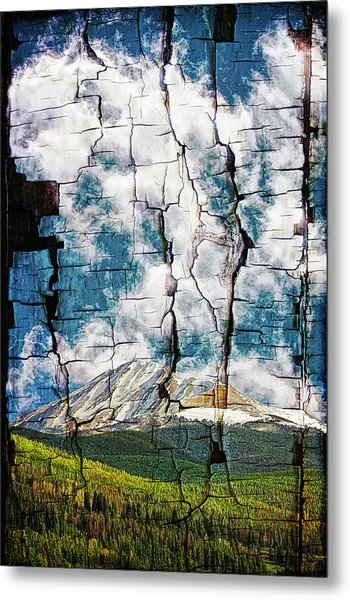 Tree Bark Mountain Tapestry Metal Print