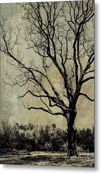 Tree Before Spring Metal Print