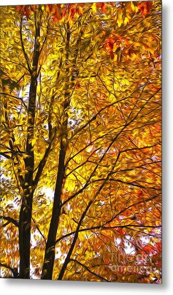 Tree Brightness Metal Print by Nur Roy