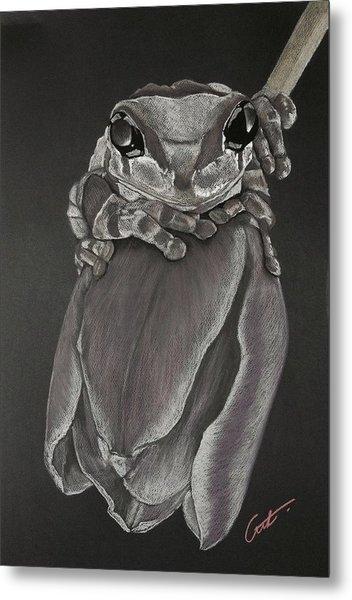 Tree Frog On Tulip Metal Print