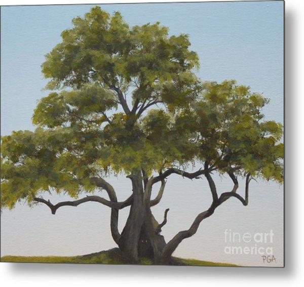 Tree Home I Metal Print