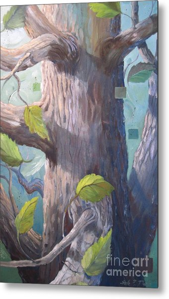 Tree Hugger Metal Print by Paula Marsh