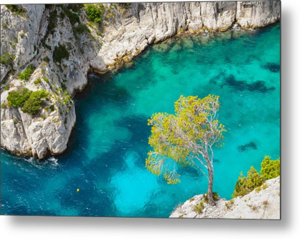 Tree On Turquoise Waters Metal Print