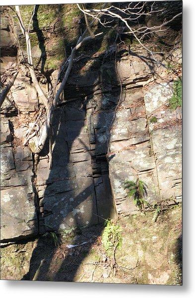 Tree Shadows Metal Print