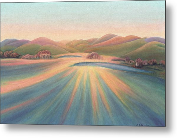 Tree Shadows Sunset Tasmania Metal Print
