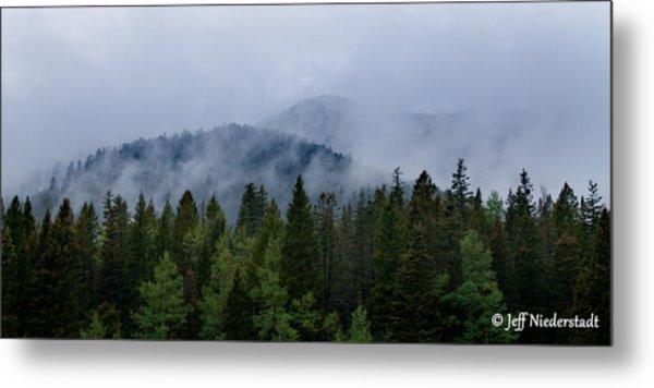 Tree Top Clouds Metal Print