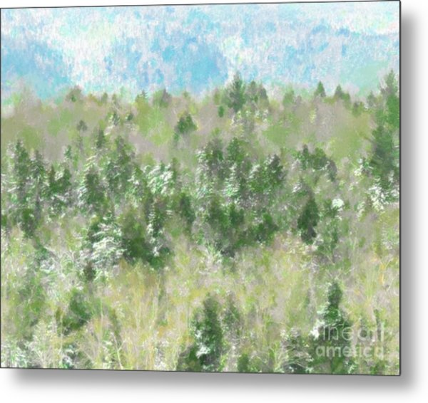 Tree Tops Metal Print