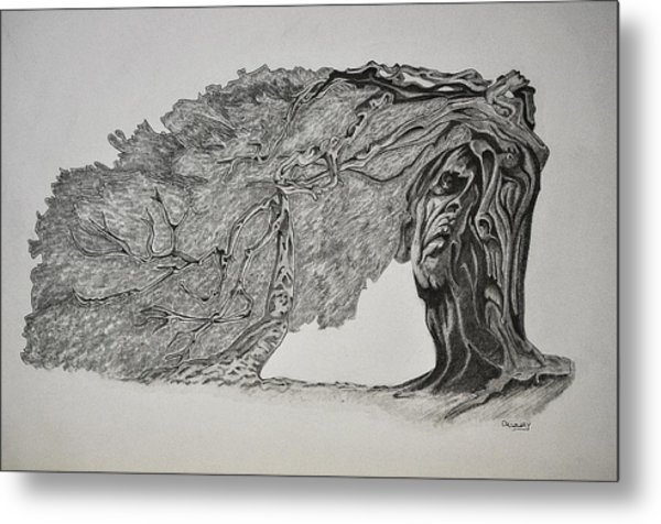Tree With Faces Metal Print by Glenn Calloway