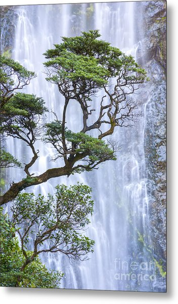 Trees And Waterfall Metal Print