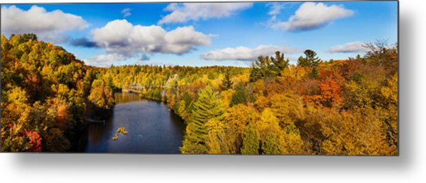 Trees In Autumn At Dead River Metal Print