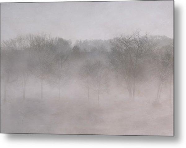 Trees In Fog Metal Print by Carol Erikson