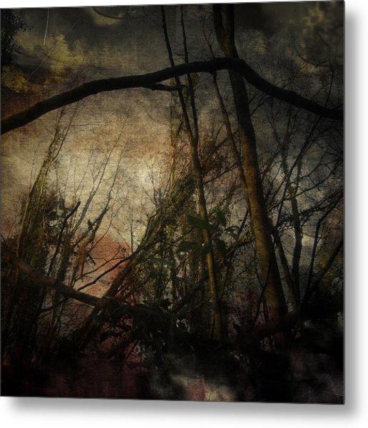 Trees No. 5 Metal Print