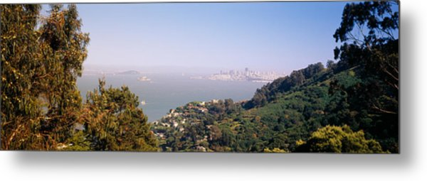 Trees On A Hill, Sausalito, San Metal Print