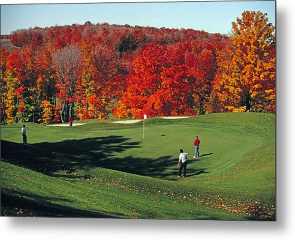 Treetops Golf Metal Print