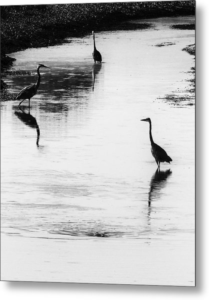 Trilogy - Black And White Metal Print