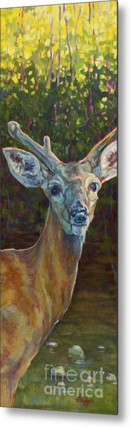 Tristan Metal Print by Patricia A Griffin