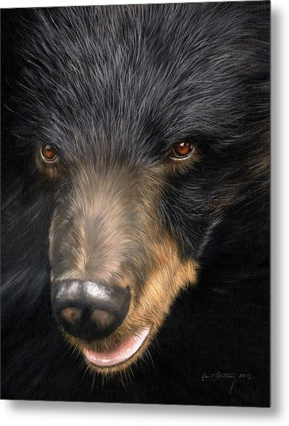 Trixie Moon Bear - In Support Of Animals Asia Metal Print
