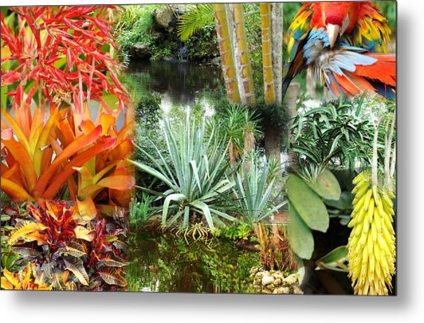 Tropical Day Metal Print