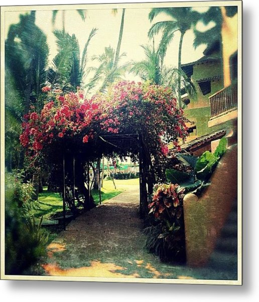 Tropical Floral Canopy Metal Print