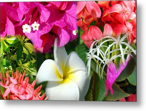Tropical Flower Power 2 Metal Print