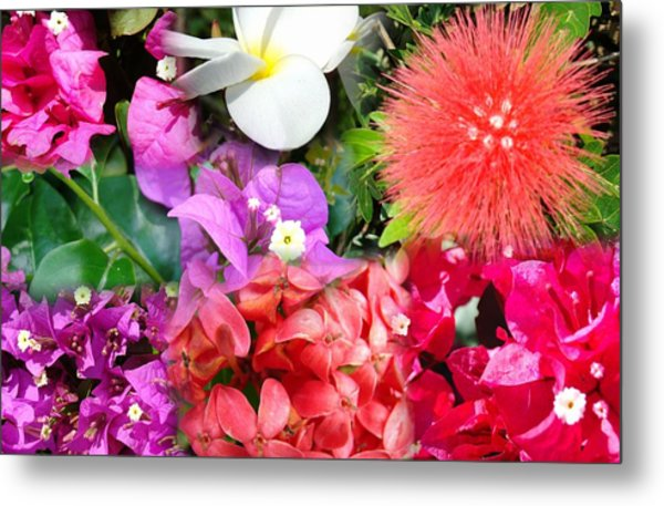 Tropical Flower Power Metal Print