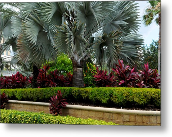 Tropical Landscape Metal Print
