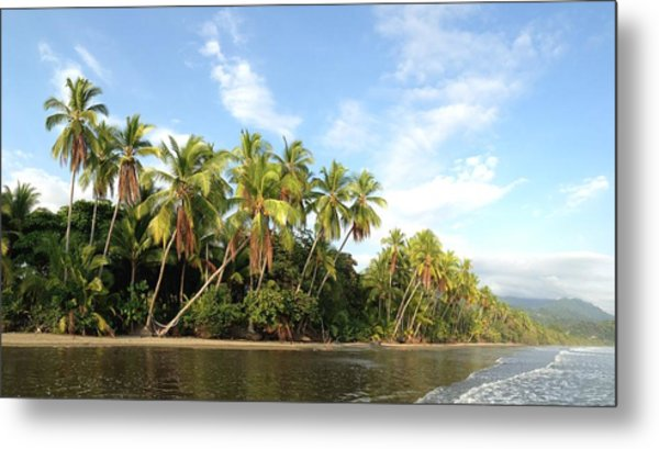 Tropical Paradise Metal Print by Tropigallery -